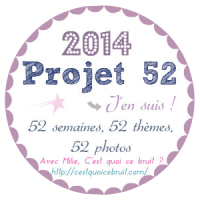 projet-52-logo-without-background